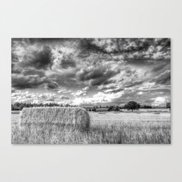The Peaceful Countryside  Canvas Print