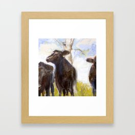 3 Bulls  Framed Art Print