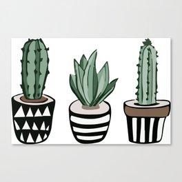 Cactus Lover Canvas Print