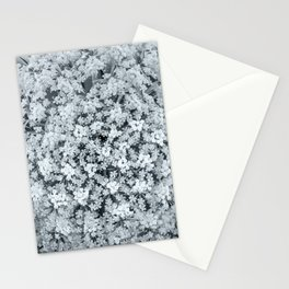 Queen Anne's Lace Flower in Cool Monchrome Black and White Stationery Cards