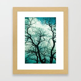 Gnarly Tree Framed Art Print