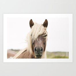 Horse V2 Art Print
