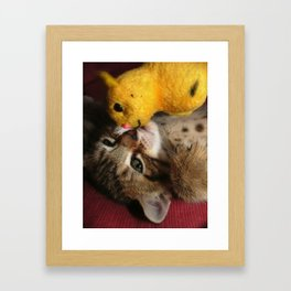 Kitten Kiss Framed Art Print