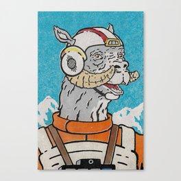Luke (Pilot) Canvas Print