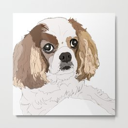 Blenheim cavalier king charles spaniel dog Metal Print