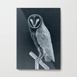 Vintage Barn Owl Illustration Metal Print