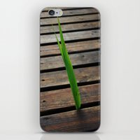 boardwalk empire iPhone & iPod Skins featuring Boardwalk by Meleah Fotografie