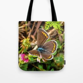 Common Blue Butterfly Polyommatus Icarus Tote Bag