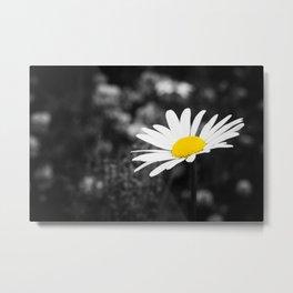 Flower 01 Metal Print