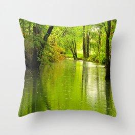 Spring Rains Throw Pillow
