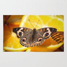 Common Buckeye Junonia Coenia Rug