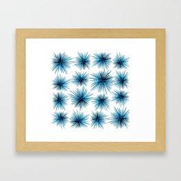 Spiny Sea Urchins Framed Art Print