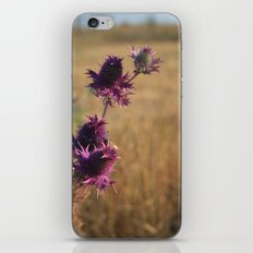Fall Flowers iPhone & iPod Skin