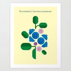 Fruit: Blueberry Art Print