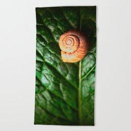The Little Sleeping Snail Beach Towel