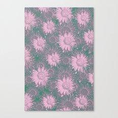 Daisy Land Canvas Print