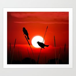 Blackbirds On Red Sunset. Art Print