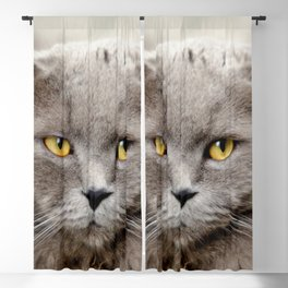 Funny Angry Cat Blackout Curtain