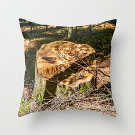 Tree Stump of cut down Tree in the Forest (orange/brown) Throw Pillow