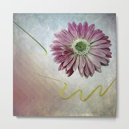 violet daisy with ribbon Metal Print