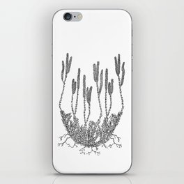 Club moss iPhone Skin