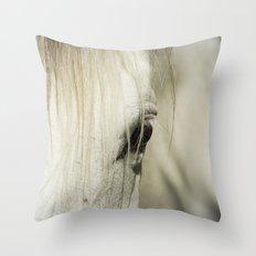 Behind the Veil Throw Pillow