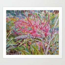 Pink Grevillea Art Print