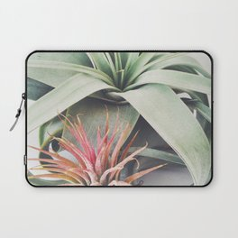 Air Plant Collection III Laptop Sleeve