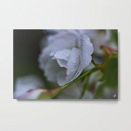 Flowers & Rain Showers Part 2 Metal Print