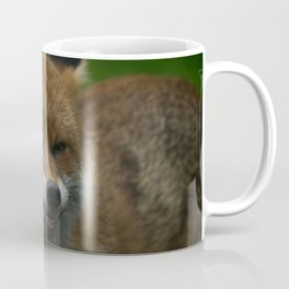 Wild Red Fox Showing Its Teeth Coffee Mug