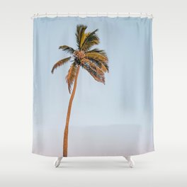 palm tree & sunset Shower Curtain