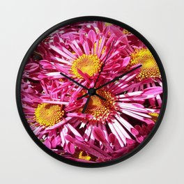 Pink Starburst Flowers Wall Clock