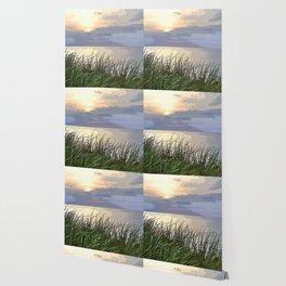 Sunset Through the Grass Wallpaper