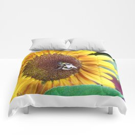 Bee_Flower_Nectar collecting Comforters
