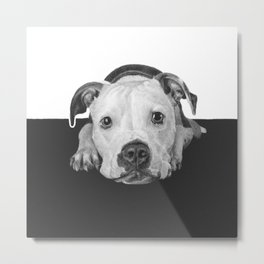 """Black and white puppers """"Cuddly"""" Metal Print"""