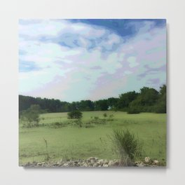 Marsh Dreams Metal Print