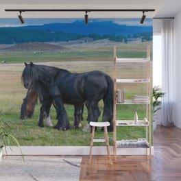 Gypsy Vanner Horses 0258 - Colorado Wall Mural