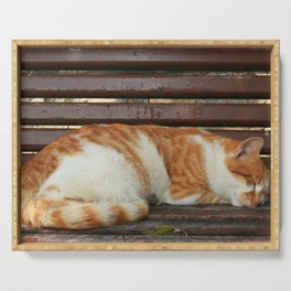Sleepy Cat Serving Tray