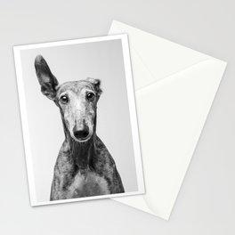 Rayito el Galgo - Dog portrait - Greyhound Stationery Cards