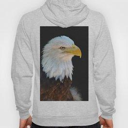 American Bald Eagle Hoody