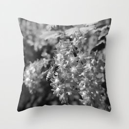 Bee and Blood Currant Ribes Sanguineum bw Throw Pillow