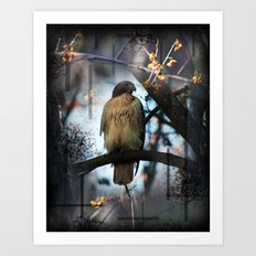 A Hawks Dream Art Print
