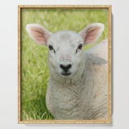Nature spring lamb Serving Tray