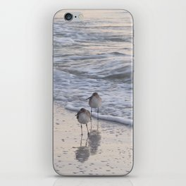 Sandpipers  iPhone Skin