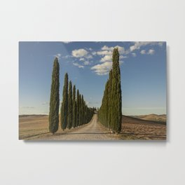 Trees in Tuscany Metal Print