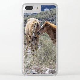 Salt River Mare and Her Colt, No. 1 Clear iPhone Case