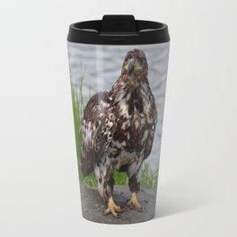 Eagle - Immature Baldy Travel Mug