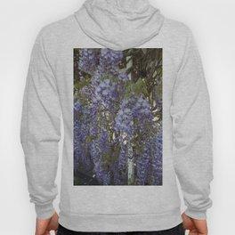 Wisteria Flowers Hoody