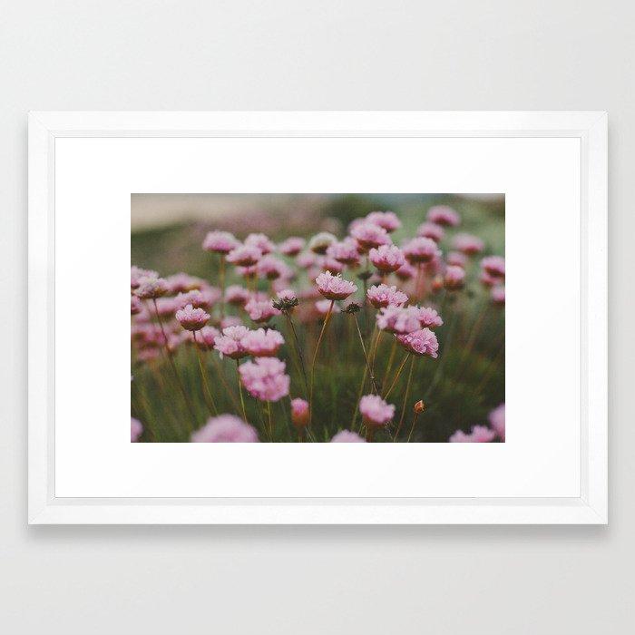 Pale Pink Framed Art Print