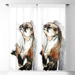 Amblonyx cinereus otter Blackout Curtain